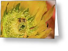 Working Bee Greeting Card by Allen Sheffield