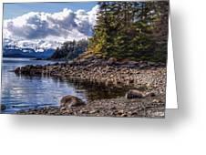Yankee Cove  Greeting Card