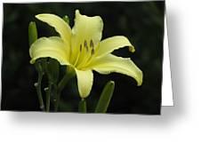 Yellow Bloom Greeting Card