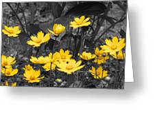 Yellow Lust Greeting Card