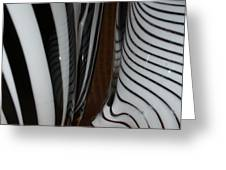 Zebra Glass Greeting Card