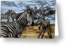 Zebra Outback  Greeting Card