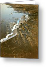 Zinc Sculptures On The Beach At Sunset Greeting Card