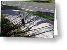 Australia - The Spider Greeting Card