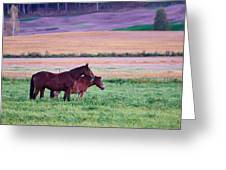 Horses Of The Fall Greeting Card
