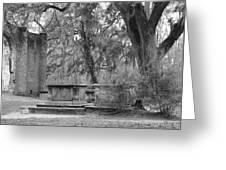 Old Sheldon Church Greeting Card