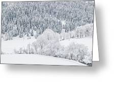 Winter Landscapes Greeting Card