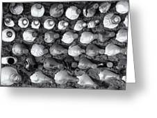 100 Bottles On The Wall Greeting Card