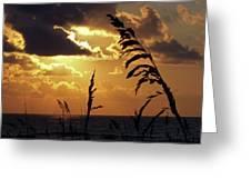 100_0103 Sunrise Greeting Card