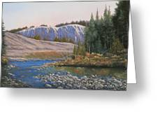 100409-1224  Rocky Creek Reflections Greeting Card