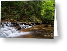 Brandywine Creek Falls Greeting Card