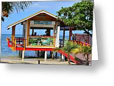 Roatan Life Greeting Card