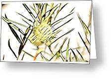 Swan Plant Greeting Card