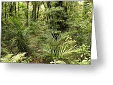 Jungle 31 Greeting Card