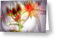 11305 Flower Abstract Series 03 #5 Greeting Card