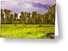 Landscape Nature Scene Greeting Card