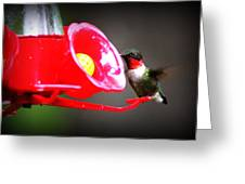 1175 - Hummingbird Greeting Card