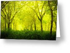 Landscape Definition Nature Greeting Card