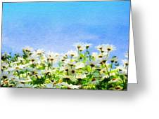 Nature New Landscape Greeting Card
