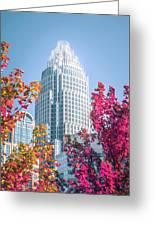Aututmn Season In Charlotte North Carolina Greeting Card