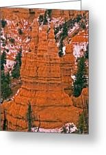 Bryce Canyon N.p. Greeting Card