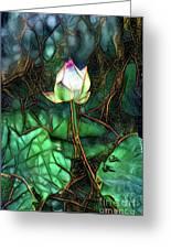 Jeweled Water Lilies Greeting Card