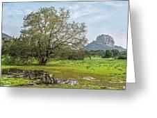 Sigiriya - Sri Lanka Greeting Card