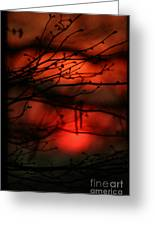 The Sunset Greeting Card
