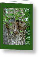 Trees I Love 13 One Who Watches Greeting Card