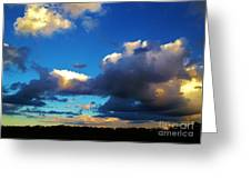 12252012017 Greeting Card