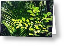 Jungle 123 Greeting Card