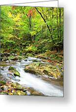 1266 Great Smoky Mountain National Park Greeting Card