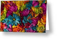 Daisy Petals Abstracts Greeting Card