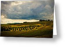 Landscape Planting Greeting Card