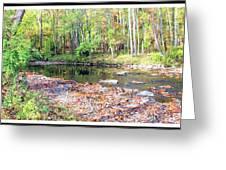 Pennsylvania Stream In Autumn Greeting Card