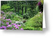Alaska_00014 Greeting Card