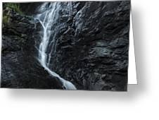 Cedar Creek Falls In Mount Tamborine Greeting Card