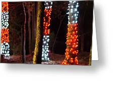 Christmas Season Decorations And Lights At Gardens Greeting Card