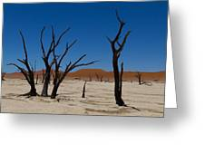 Dead Vlei Greeting Card