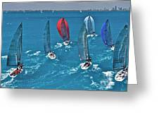 Miami Regatta Greeting Card