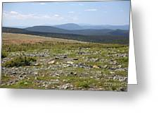 Alpine Tundra Greeting Card