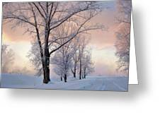 Amazing Landscape With Frozen Snow Covered Trees At Sunrise   Greeting Card