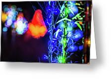 Christmas Season Decorations And Lights At Gardens Greeting Card