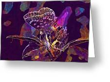 Insect Nature Live  Greeting Card