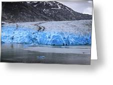 Magnificent Sawyer Glacier At The Tip Of Tracy Arm Fjord Greeting Card
