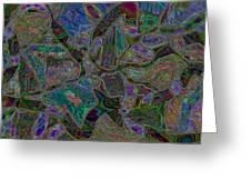 161228c Greeting Card