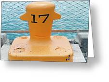 17 At Navy Pier Greeting Card
