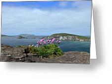 Blasket Islands Greeting Card