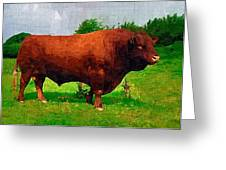 Cow Greeting Card