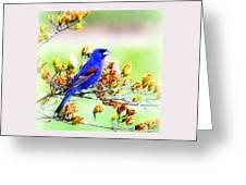 1795 - Blue Grosbeak Greeting Card